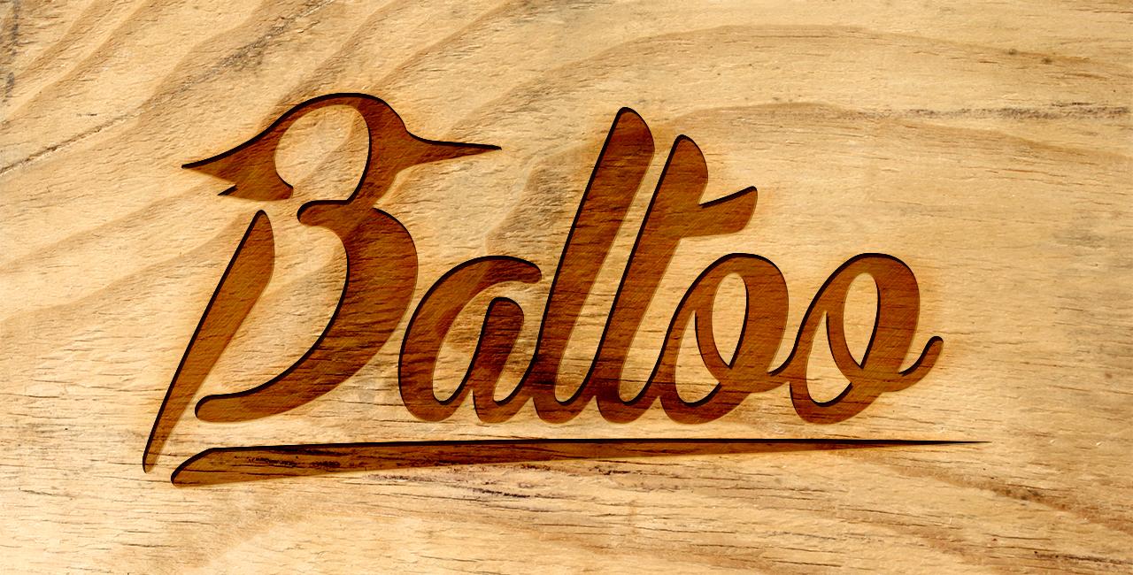 BALTOO-logowiz